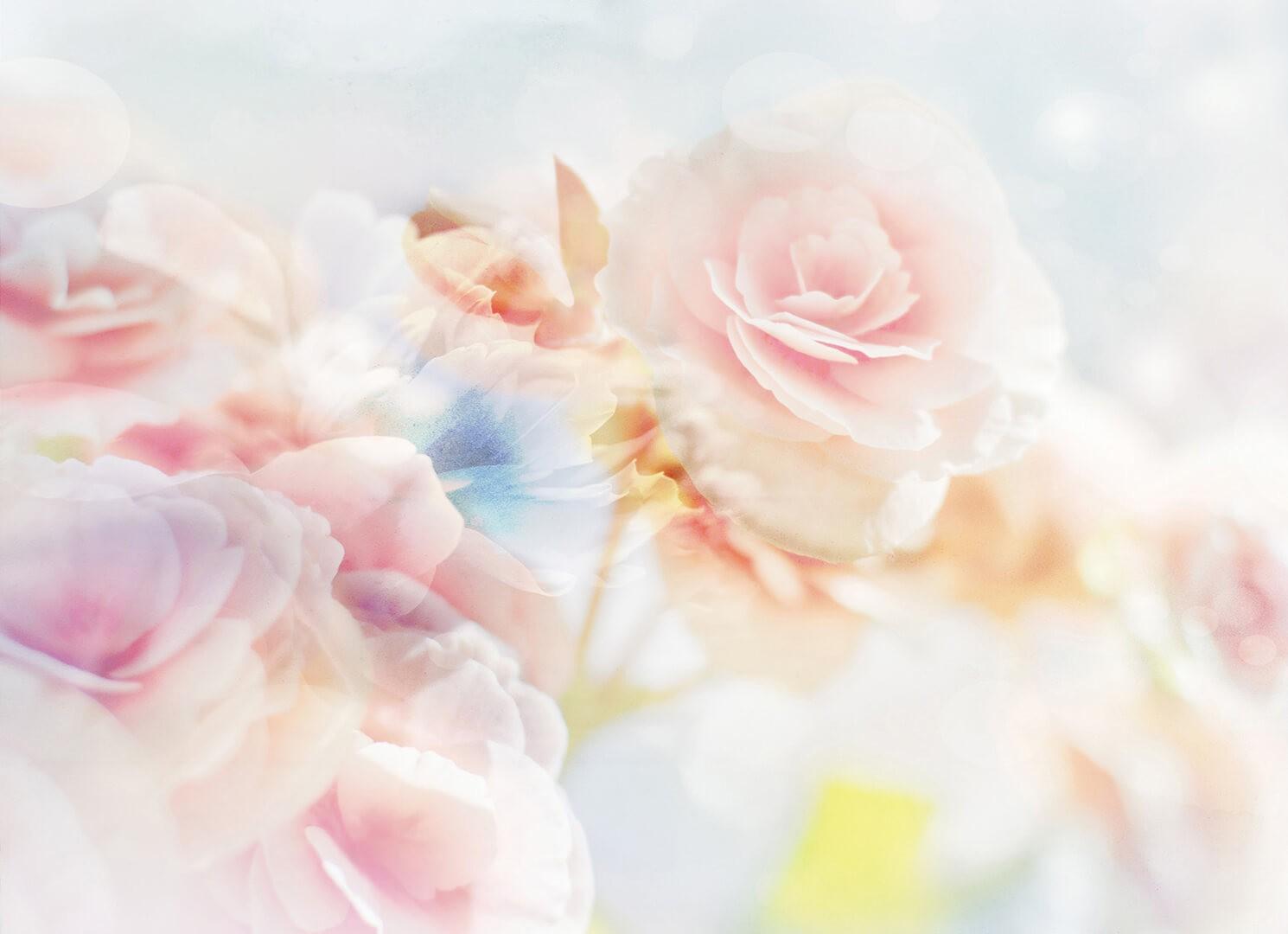 фон бежевые цветы